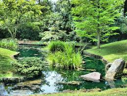 Espaces verts aménagés sur-mesure ! (Yvelines -78)