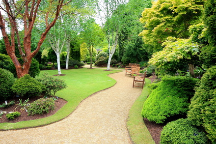 Embellir son jardin - Création de jardins paysagers dans les Yvelines