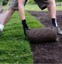 Des jardiniers pro pour semer un gazon en automne (Yvelines)
