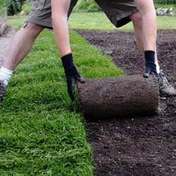 Gazon de plaquage - Espace verts et jardins