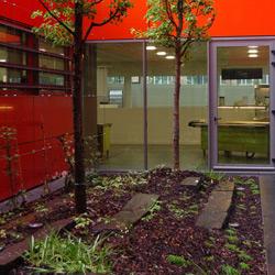 Aménagement de patios intérieurs - Espaces Verts et Jardins