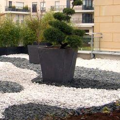La minéralisation pour jardins et terrasses