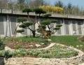 Aménagement de jardins pour particuliers